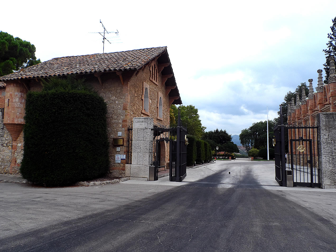 Codorniu 1551 vineyard in Spain